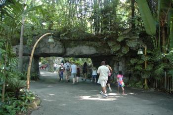 20.9:350:233:0:0:アニマルキングダム 入り口近く:right:1:1:アニマルキングダム 入り口近くの石のトンネル:0: