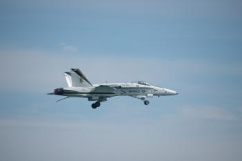 4.9:350:233:0:0:空母着艦モードのFA-18:right:1:1:空母着艦モードのFA-18:0:
